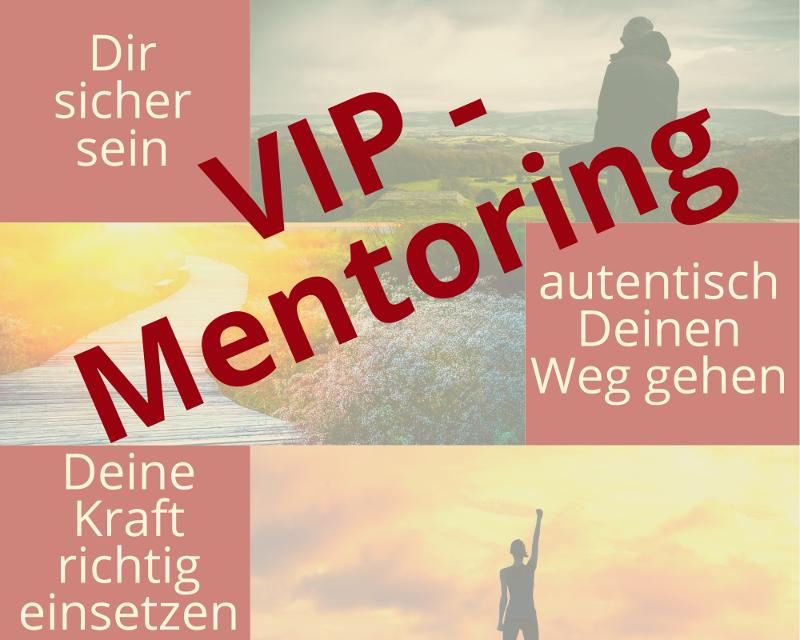 VIP Mentoring